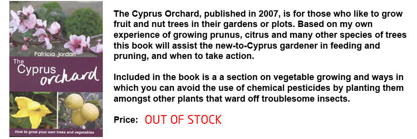 Cyprust orchard Description Out of Stock